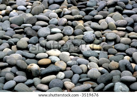 At the local botanical garden, we have a japanese garden area with a rock beach leading up to the lake. This is a small section