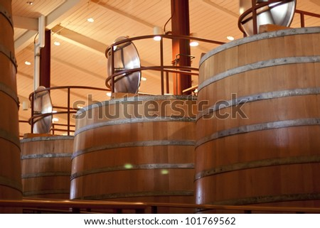 At the Winery, factory, Huge barrels