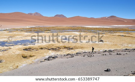 Atacama Desert is the driest non-polar desert in the world.