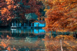 Ataturk Arboretum is in Istanbul with the reflection of thousands of colorful leaves and small cute hut in autumn. It is a beautiful natural wonder where local and foreign tourists do hiking, camping.