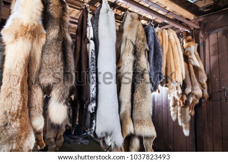 atelier of fur products #1037823493