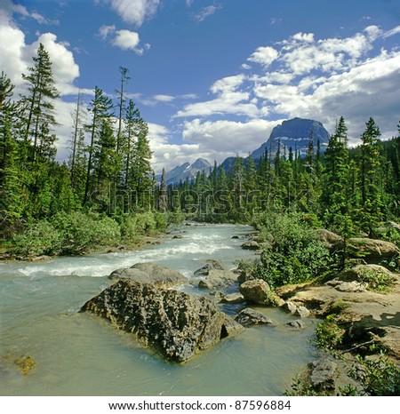 Athabasca River, Alberta, Canada