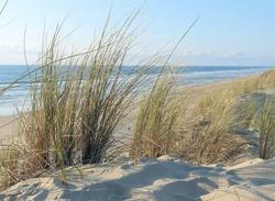 Atlantic ocean sand coast, Hourtin, Aquitaine, France
