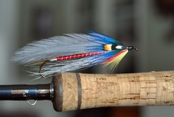 Atlantic Salmon and trout streamer fly called