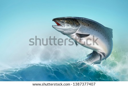 Atlantic salmon or pink salmon on background. Red salmon. Fishing on the river northern fish. Atlantic salmon the background of waves a realistic illustration of a place for text.