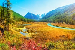 Atmospheric autumn landscape with swamp and  river in mountains. Path along the swamp. Beautiful alpine landscape with azure water in fast river. Power majestic nature of highlands. Altai Mountains.