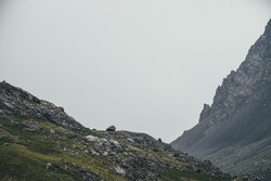 Atmospheric highlands landscape with narrow mountain valley and sharp rocks on steep slope under gray sky. Bleak mountain scenery with pointed rockies on mountainside and glen in overcast weather.