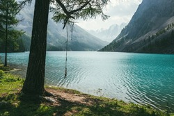 Atmospheric idyllic landscape with rope swing on tree near alpine lake with relax waves on transparent turquoise water. Amazing view to meditative ripples on azure clear calm water of mountain lake.