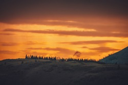 Atmospheric landscape with forest silhouette on silhouette of mountain on background of vivid orange dawn sky. Colorful nature scenery with sunset or sunrise of illuminating color. Sundown paysage.