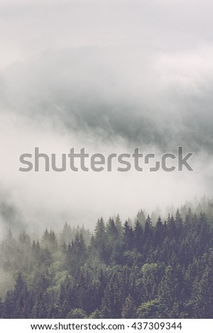 Stock Photo Atmospheric misty landscape with thick mist billowing through a mountain valley forested with pine trees, vertical with copy space