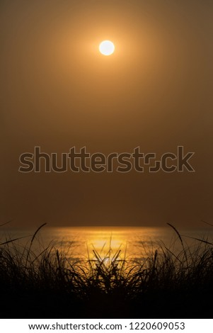 atmospheric sun over the sea
