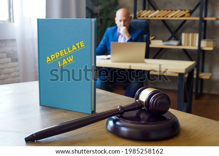 Attorney holds APPELLATE LAW book. Exploreappellate lawwith Vault and see what kind of experience you need to practice in this area of law  Photo stock ©