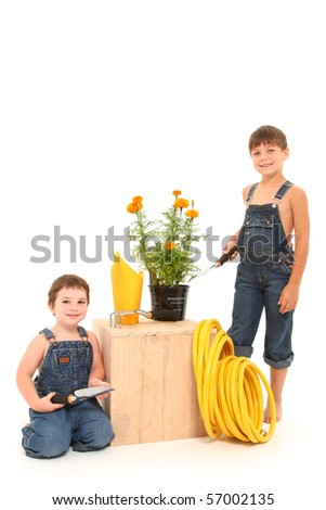 Attractive 3 and 6 year old boys with gardening tools and potted marigold plant over white background.