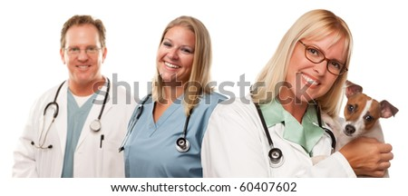 Attractive Female and Male Veterinarian Doctors with Small Puppy Isolated on a White Background.