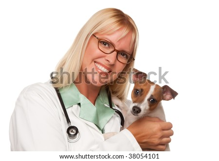 Attractive Female Doctor Veterinarian with Small Puppy Isolated on a White Background.