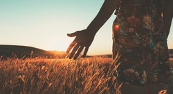 Attractive female in summer dress touches with hand meadow with sunset in the background. Intentional cinematic golden evening filter.Conceptual wide angle panoramic background .