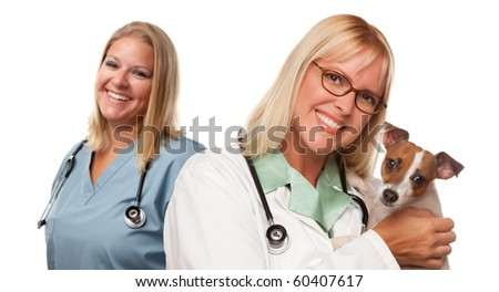 Attractive Female Veterinarian Doctors with Small Puppy Isolated on a White Background.