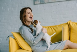 attractive pregnant woman laughing and playing with jack russell terrier in living room