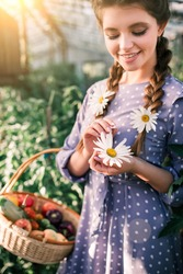 Attractive summer smiling girl with pigtails guessing on a daisy. Beautiful woman with pigtails in the summer garden with basket of vegetables