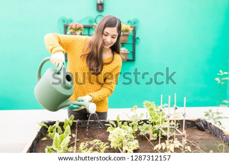 Attractive woman gardening with watering can in urban garden