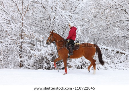 Attractive Young Woman Riding a Horse the Snow
