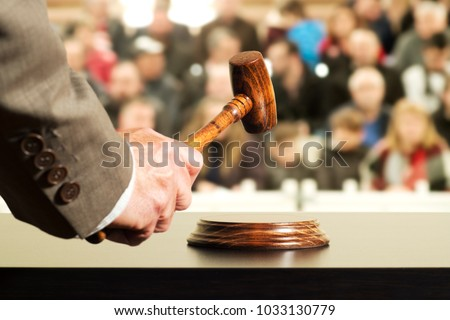 auction  bid sale judgment mallet with judge and public