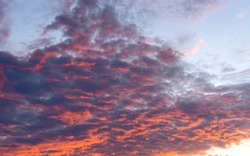 August colorful sunset sky with altocumulus clouds.