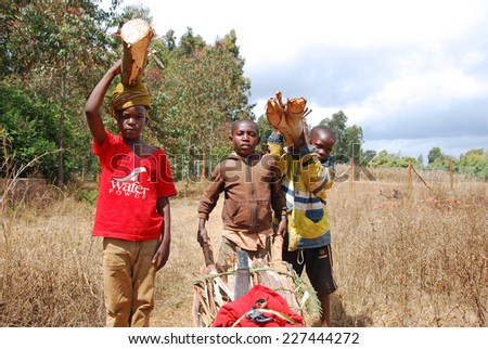 August 2014-Pomerini-Tanzania-Africa-African children to work carrying logs of wood on their heads in the African way, for cooking and heating-often in Africa are the kids to do the hardest work