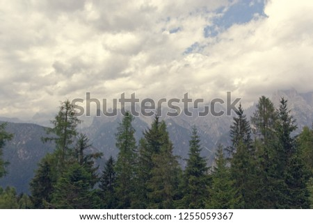 Auronzo di Cadore: Italy: panoramic view from the top of the mountain. #1255059367