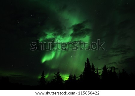 Aurora borealis in an Alaskan sky with clouds and silhouettes of spruce trees. - stock photo