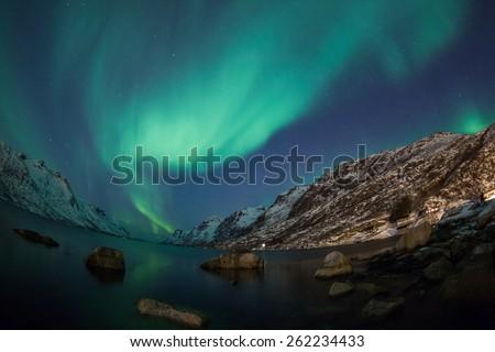 Aurora Borealis (Northern Lights)  - Shutterstock ID 262234433