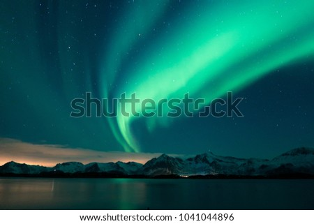 Aurora Borealis spotted in the Lofoten Islands, Norway - Shutterstock ID 1041044896