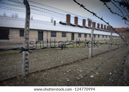 Auschwitz in Winter Fog Barbed Wire Fence