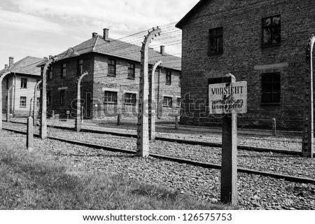 Auschwitz scene