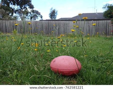 Aussie Rules ball house backyard