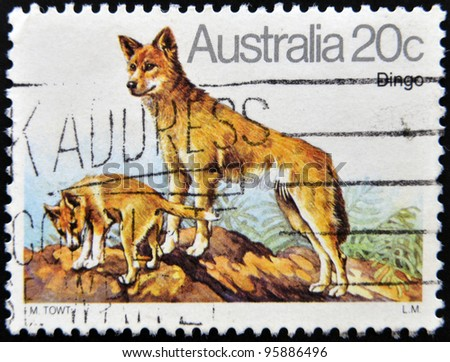 AUSTRALIA - CIRCA 1980: A stamp printed in Australia shows Australian Dingo Dog, circa 1980