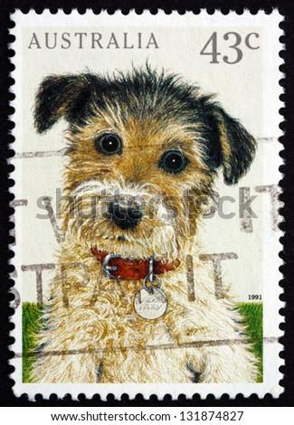 AUSTRALIA - CIRCA 1991: a stamp printed in the Australia shows Puppy, Pet Animal, circa 1991