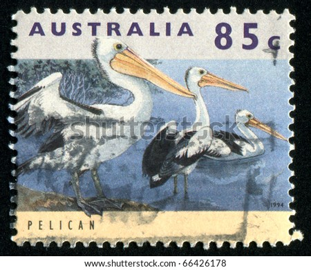 AUSTRALIA - CIRCA 1994: stamp printed by Australia, shows pelican, circa 1994