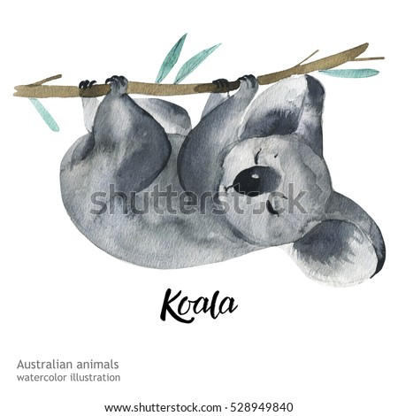 australian animals watercolor...