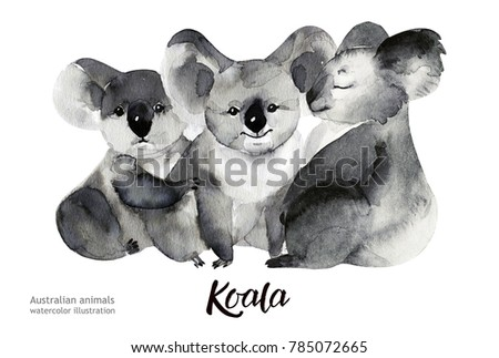 Australian animals watercolor illustration hand drawn wildlife isolated on a white background.