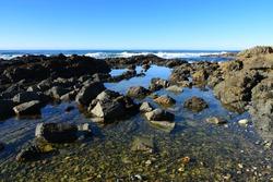 Australian Coastline, Hallidays Point rock pools