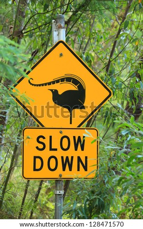 Australian road sign indicating possibility of lyrebirds.