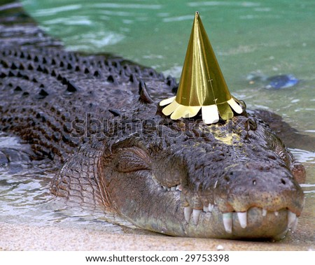[Image: stock-photo-australian-saltwater-crocodi...753398.jpg]