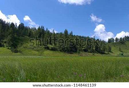 Austria Tauplitz