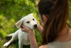 Authentic shot of an young woman is caressing her pedigree puppy of Labrador Retriever dog while having fun together outside. Concept: love for animals, friendship, authenticity, happiness,pets