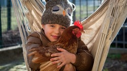 Authentic shot of happy little smiling girl is holding a brown hen outside the countryside house in a sunny autumn day. Concept: love for animals and nature, agriculture, authenticity