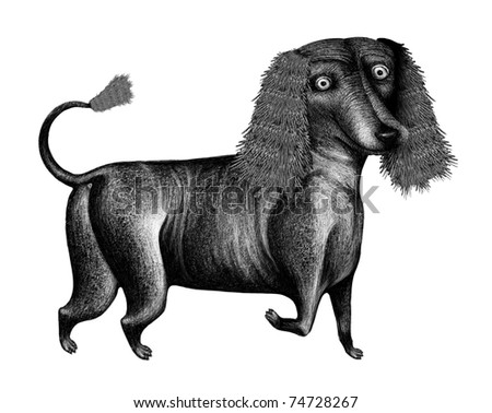 author's schedule illustration - graphically drawn a funny dog (pen, ink)