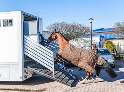 Auto trailer for transportation of horses .