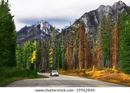 Auto-travel on the north in reserves among woods and mountains