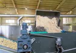 Automated biscuit cookies production processing plant conveyor. Conveyor belt transfers or moving the dough